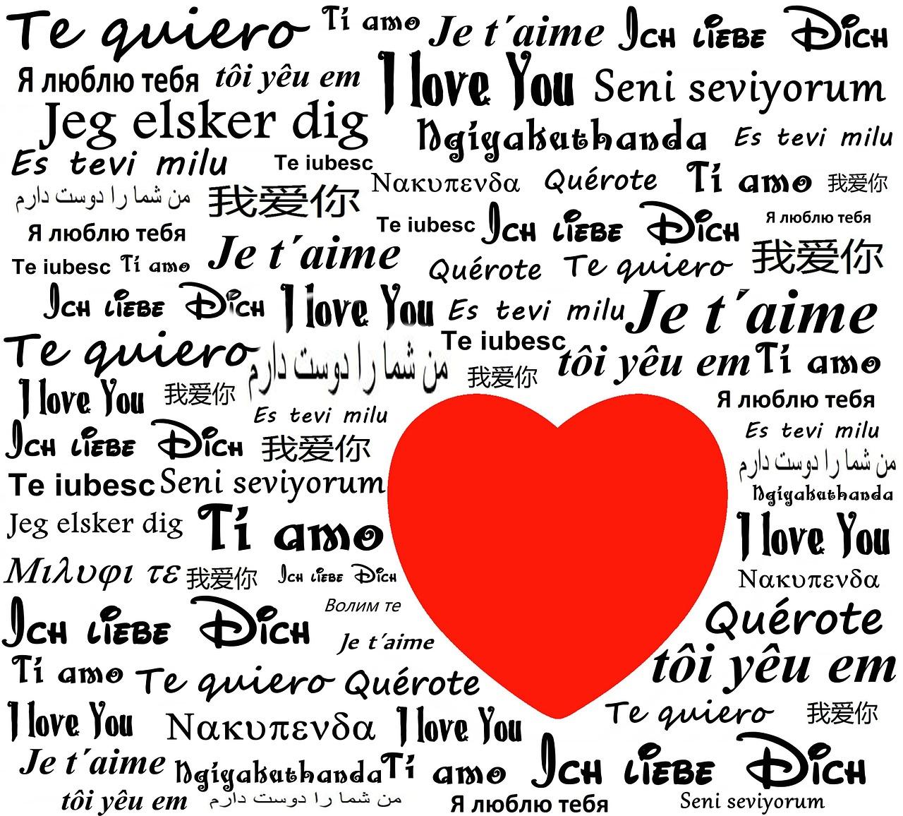 """Je t'aime"", le meilleur single de la chanteuse Lara Fabian"